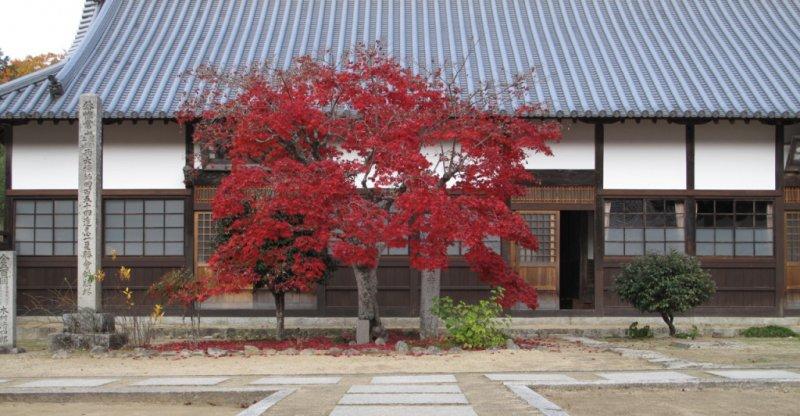 Leven in een Japans zenklooster